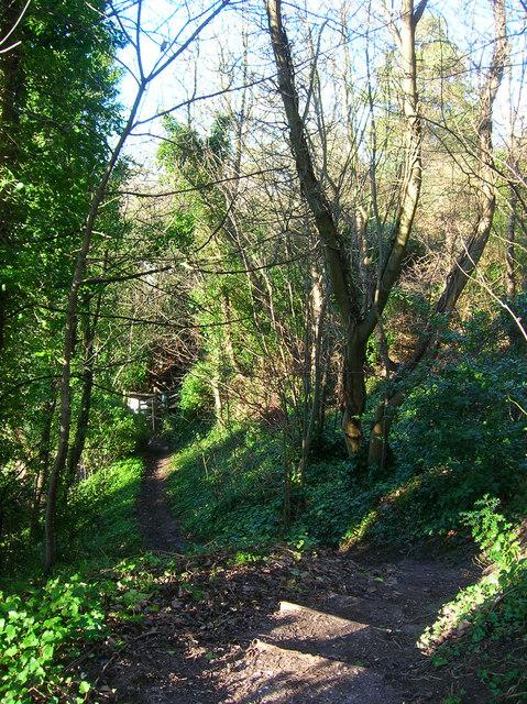 Footpath to Ringmer