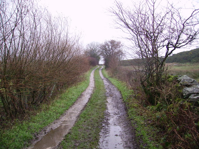 Track Above Dalton Park Wood