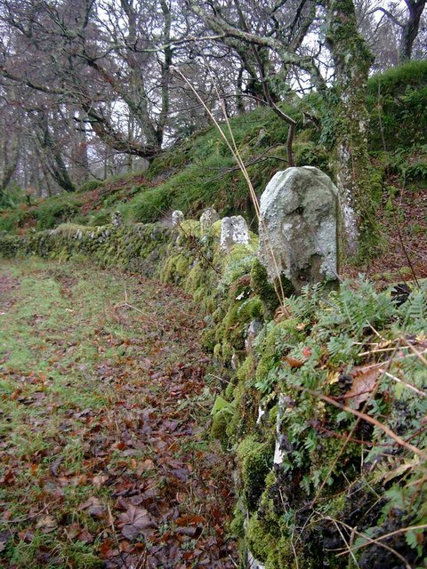 Stone fence posts at Ardpatrick