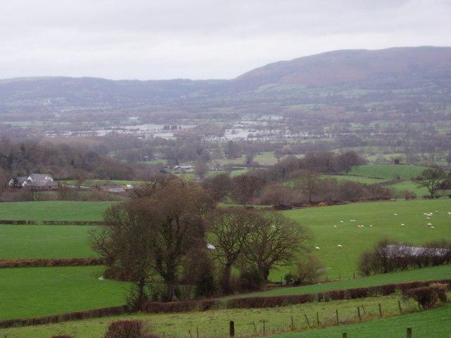 Hillside above Mynydd Llech