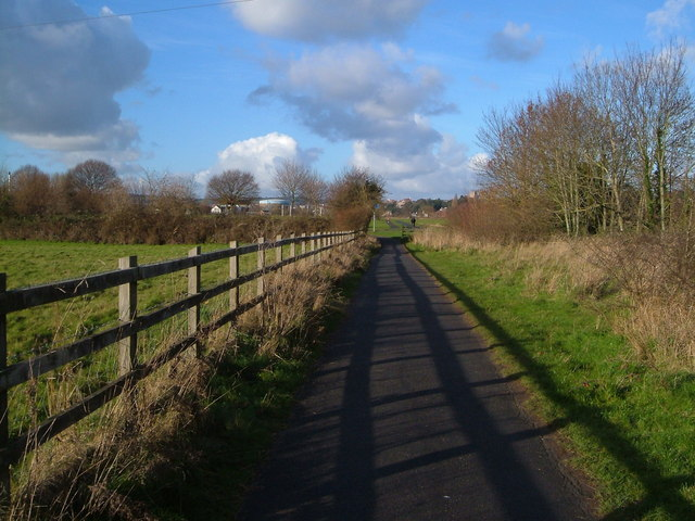 Foot- and cycle-path near Salmonpool Bridge, Exeter