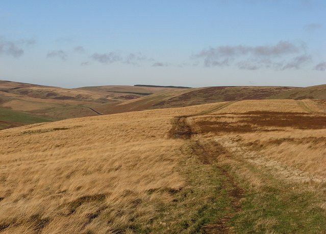 North ridge of Dewar Hill