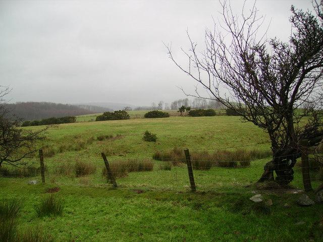 Farmland Dalton Park