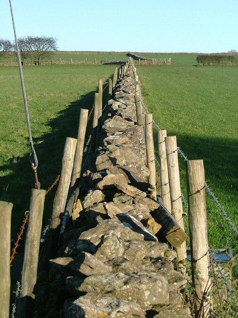 Wall, Pasture Lane