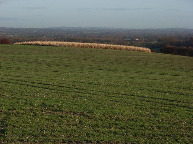 Farmland above Uffington