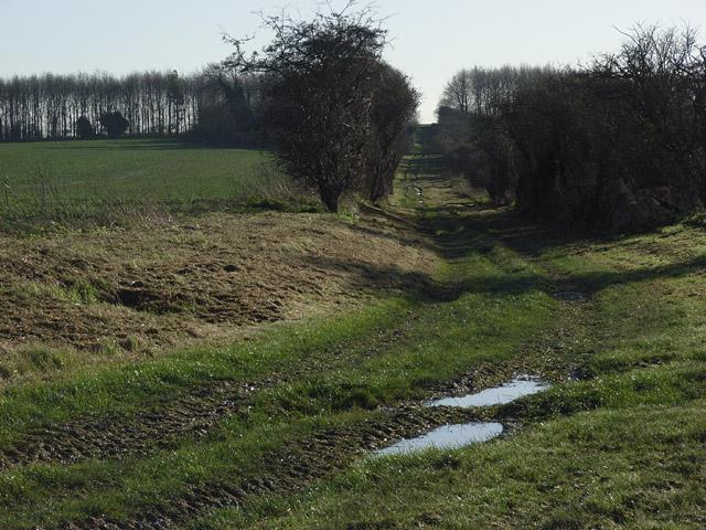 Track, Odstone Barn