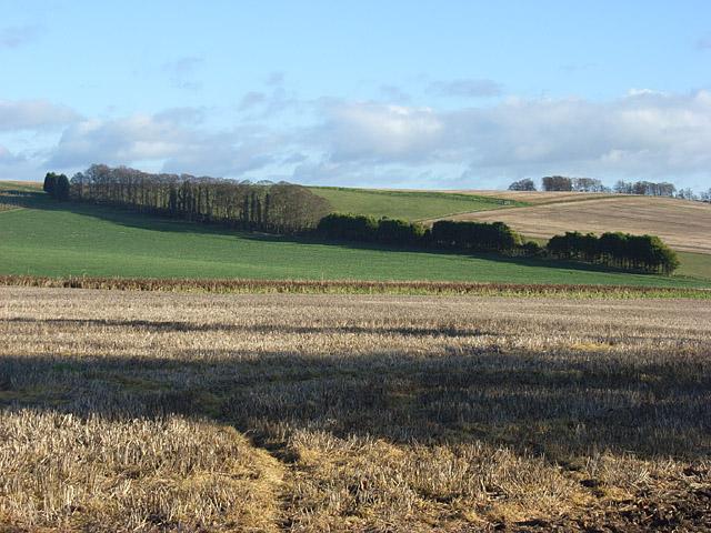 Farmland, Park Down Farm