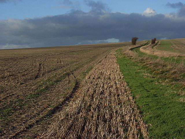 Farmland near Woolstone Hill Barn
