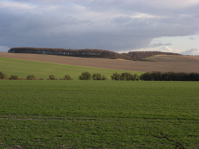 Farmland below Whitehorse Hill