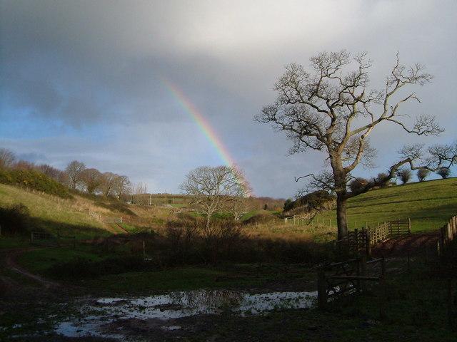 Rainbow over Brownstone