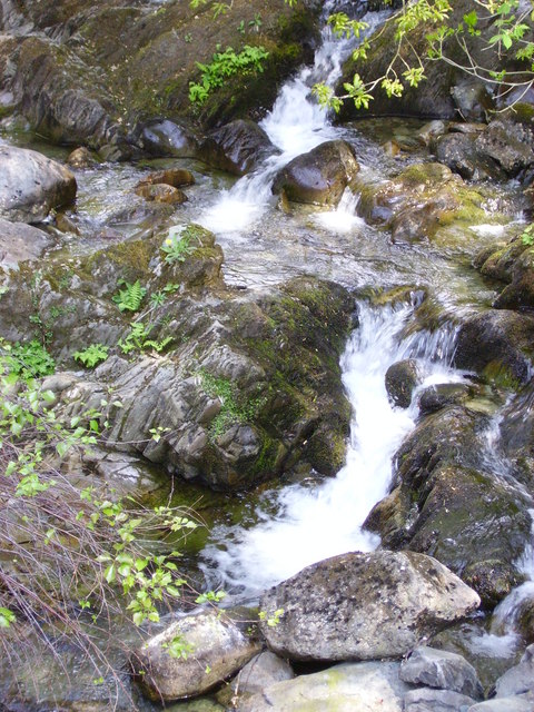 Falls near Low Sweden Bridge