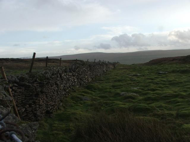 Drystone Wall on Stake Moss.