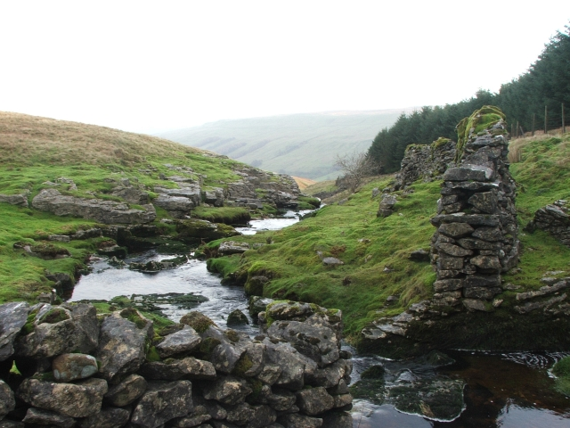 Stream in Back Gill.