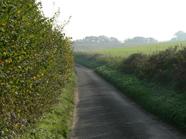 The Road To Elsing