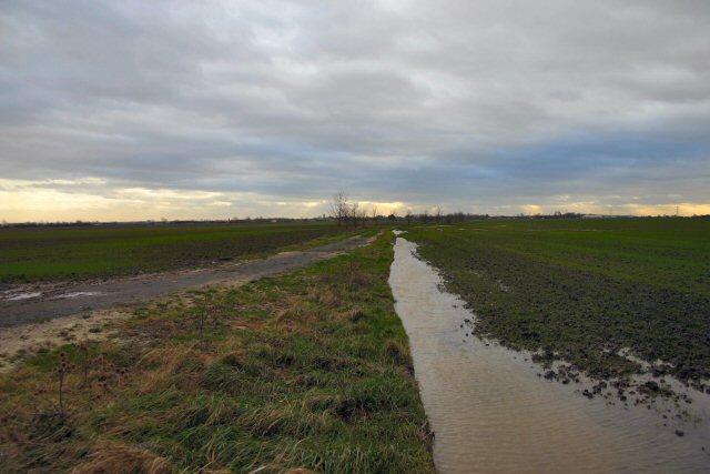 Featureless flooded Fenland