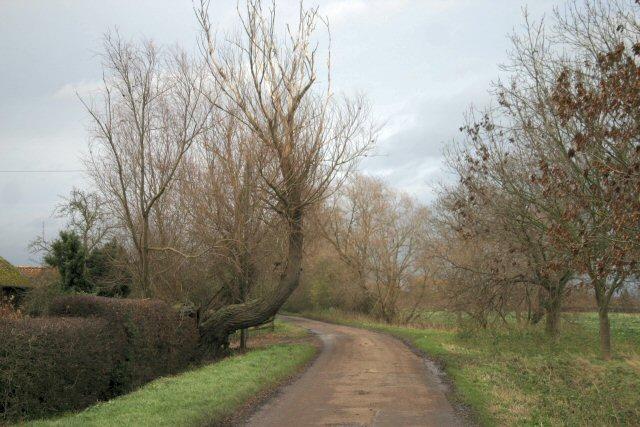 Track to Nornea Farm