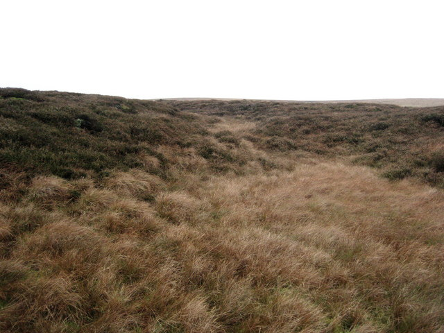 Grassington Moor
