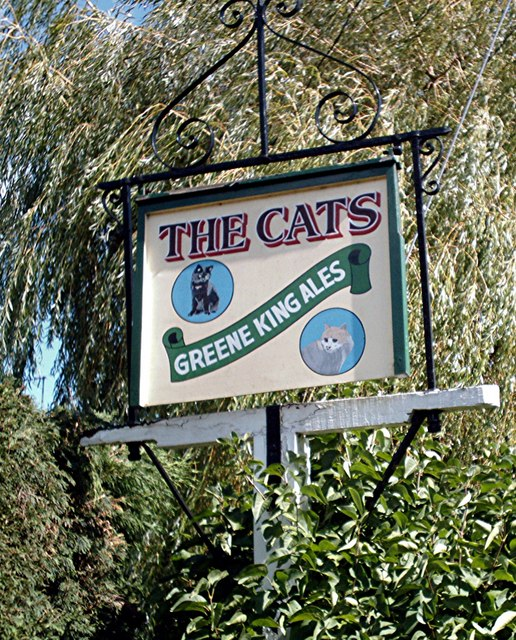 The Cats - Pub sign