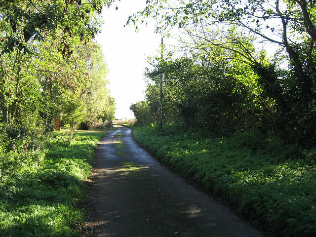 The Road To Letton Green