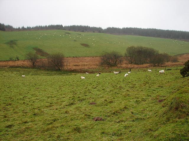 Farmland at Eithyn Llwydion