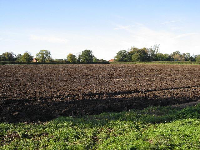 A Bush Farm Field