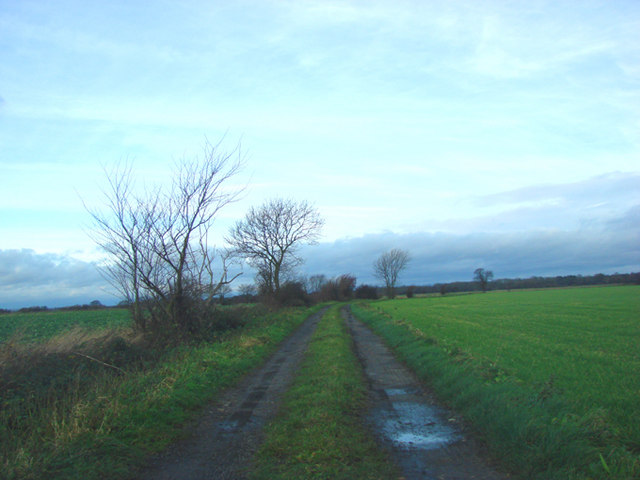 Cart Track over farmland