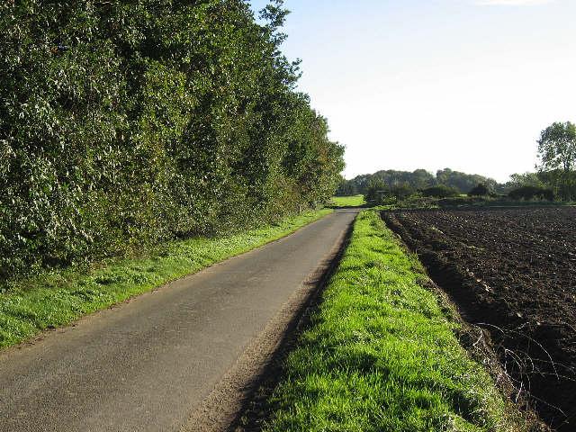 The Road To Saham Hills