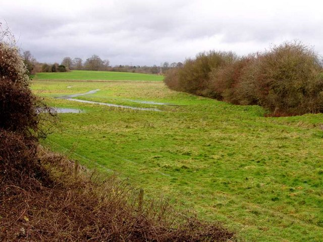 Merril Hill winter water meadow