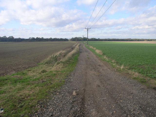 Bridleway Path