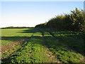 TF9309 : A Fieldside Track by Roger Gilbertson