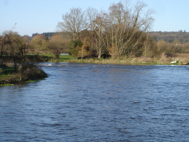 River Avon behind Breamore Mill