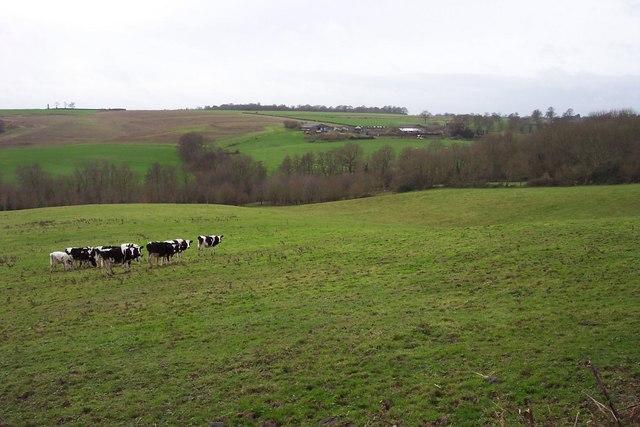 Open countryside near Tunbridge Wells