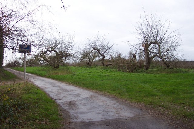 Old orchards