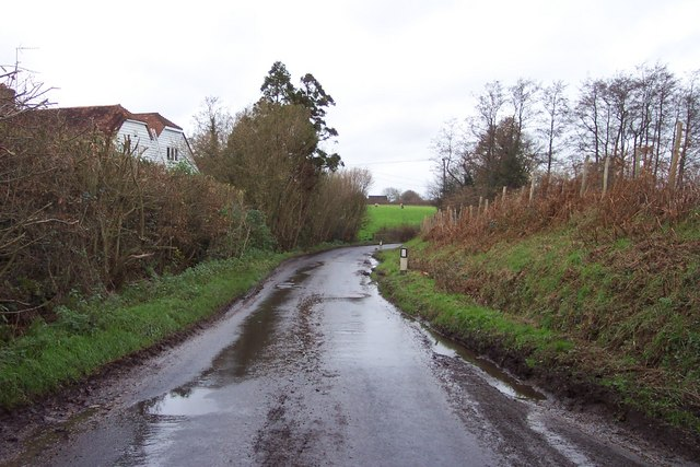 Lane by Clayhill Farm, Colliers' Green