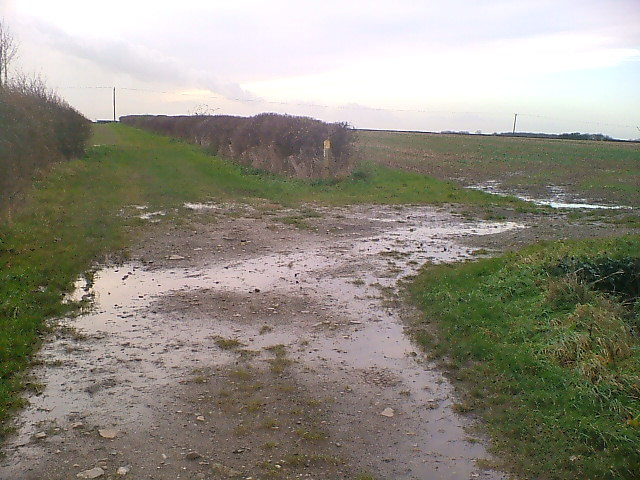Muddy Track Home.