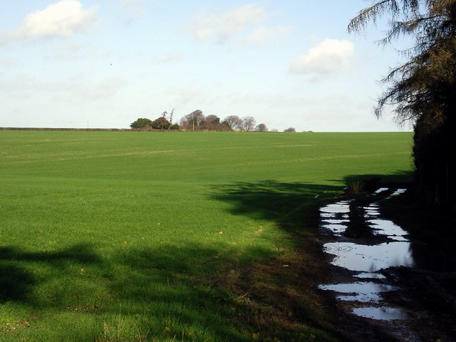 Fields south of the A30