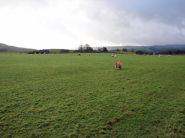 Farmland at Llanerch