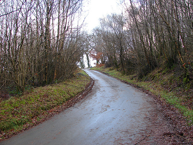 Country lane near Blaen Pathiog