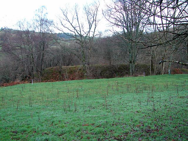 Farmland at Rhyd-yr-onen