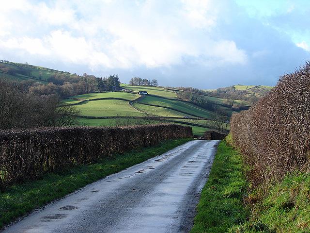 Country lane near Rhiwbrongelly