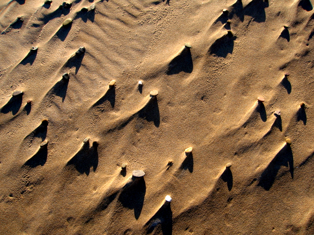 Patterns on the beach east of Newburgh