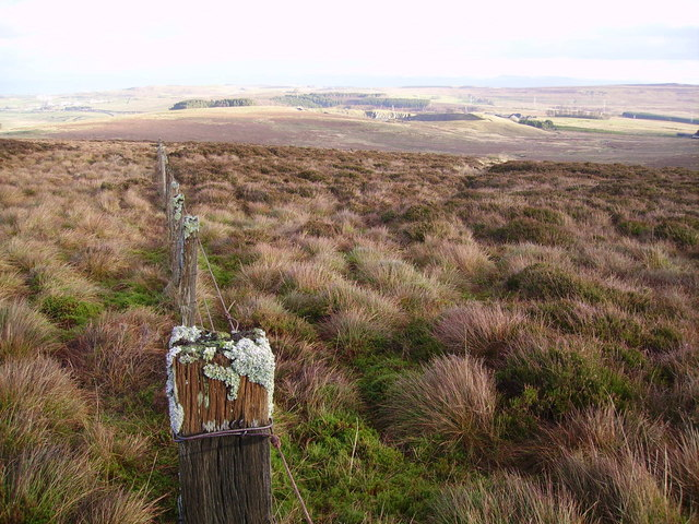 Fence Above Longfell Gill