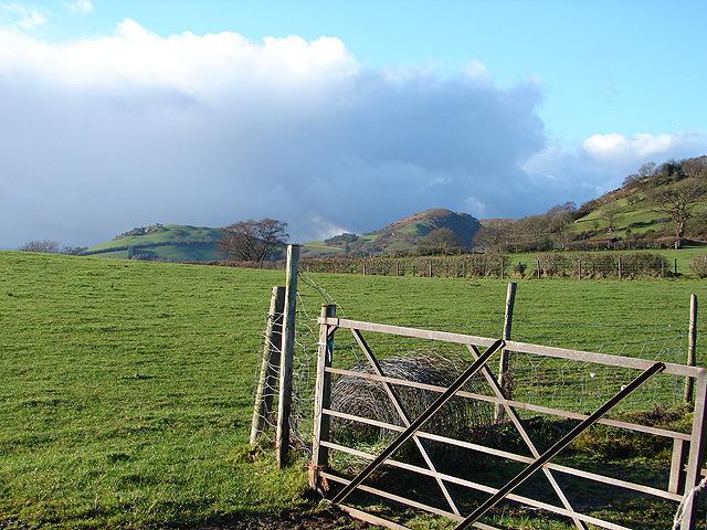 Farmland at Llwyn-crwn