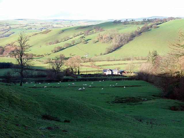 Dolddigus Farm