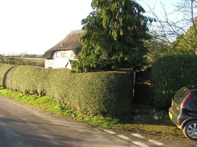 Walnut Tree Cottage