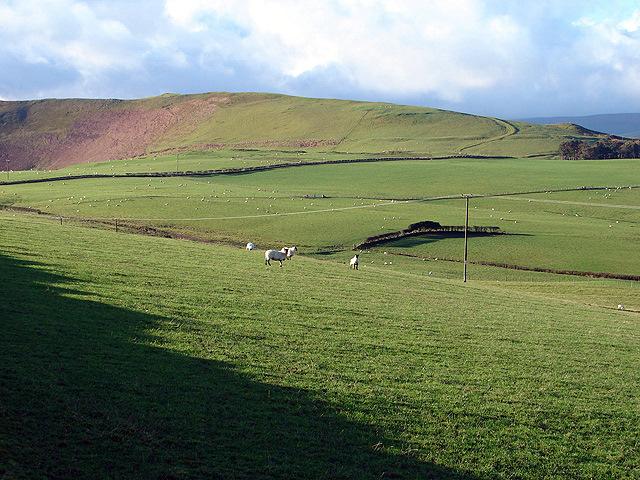 Open farmland near Waun y Gadair