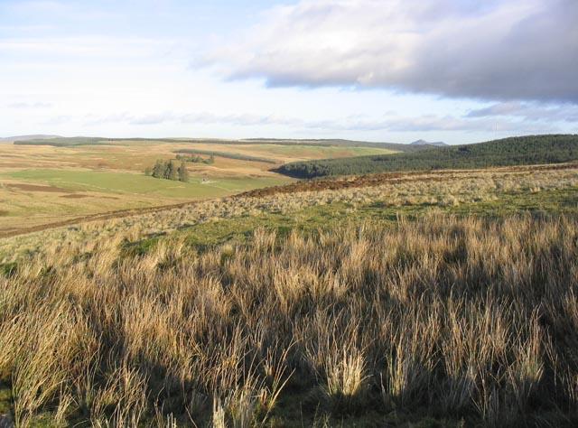 Moorland near Watch Hill