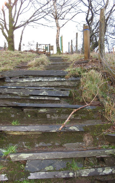 The way home - steps at the top of Vivian Quarry