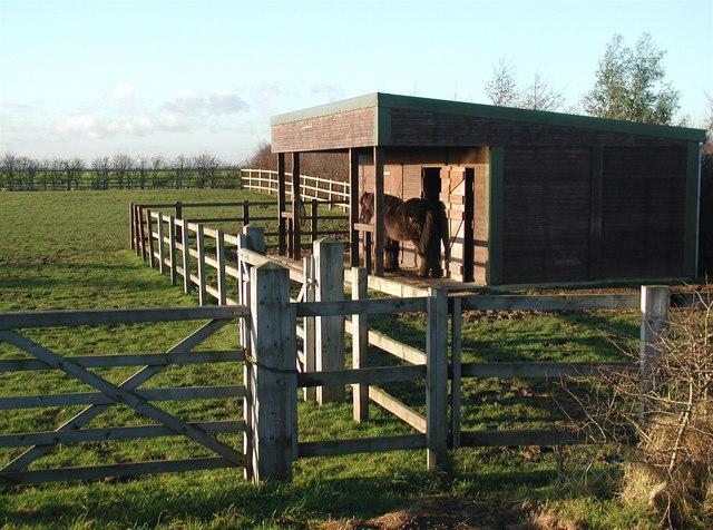 North Field, Welwick
