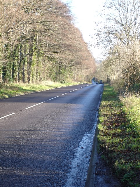 A354 towards Salisbury